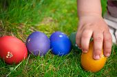 stock photo of pagan  - Easter egg hunt - JPG