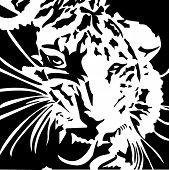 Ferocious Tiger