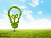 Conceptual image of green plant. Protect our planet