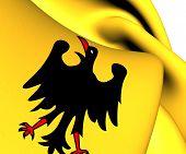 Holy Roman Emperor Flag