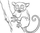 Tarsier Animal Cartoon Coloring Book