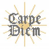 Carpe Diem Embroidery Cross Stitch