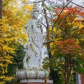 Chinese Goddess At Zojoji Temple in Tokyo