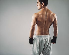 picture of boxers  - Rear view of muscular young male boxer standing looking away - JPG