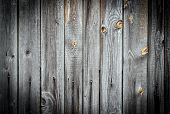 Old Grey Wood Texture With Natural Patterns