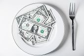 Plate Of United States Dollars