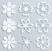 Paper Flowers. Set Of Paper Ornaments