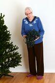 senior trying to untangle christmas lights