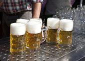 Fresh Beer Oktoberfest
