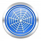 spider web icon, blue button