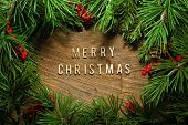 Christmas tree branches background - Merry Christmas