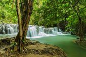 Waterfall Near Tree