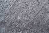 Smooth Fleecy Texture Of Silvery Gray Color