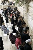 stock photo of tora  - The Wailing Wall - JPG