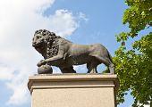 monument Swedish lion in Narva Estonia