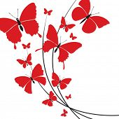 design of different red butterflies