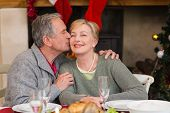 Mature man kissing the cheek of his wife at home in the living room