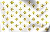 Royal Standard Of France