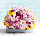 Beautiful flowers in box on table on light blue background