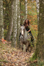 pic of appaloosa  - Young girl with appaloosa horse in autumn forest