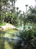 Japanese Water Park Alicante