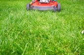 picture of lawn grass  - Lawn mower cutting green grass in backyard - JPG