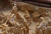 Fossil Park Digsite