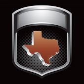 texas state on silver shiny display
