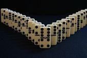 Domino V
