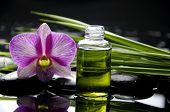 Oriental spa with orchid and bottles with essential oil and palm leaf