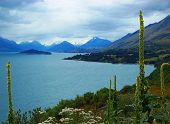 Lake Wakitipu,south Island,nz