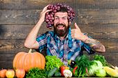 Farmer Proud Of Grapes Harvest. Man Hold Grapes Wooden Background. Farmer Bearded Guy With Homegrown poster