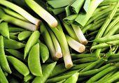 beans peas & leeks