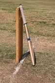 Cricket Bat And Wikets