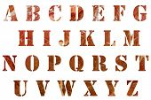 Meat Letters. Alphabet in Raw Meat. Stencil Letters in Meat Pattern. Isolated on white. Room for tex poster