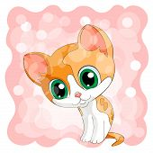 Red Cute Kitty Redhead Kitten With Green Eyes Background  Pink poster