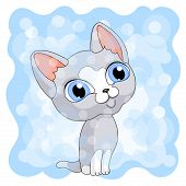 Gray Cute Kitty Blue Background  Cat Blue Eyes poster