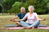 Old couple relaxing while sitting in lotus pose. Senior man and elderly woman meditating sitting in  poster