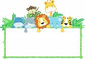 stock photo of bamboo leaves  - vector illustration of cute jungle baby animals with blank sign - JPG