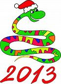 Snake  New Year 2013
