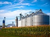 stock photo of silos  - Corn dryer silos standing in a field of corn - JPG