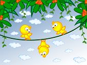 Canaries On Branch.eps