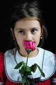 Ruiken Rose