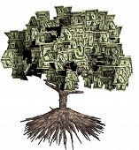 Money Tree - Rooted tree with dollar bills