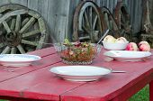 Salad Glass Dish And Apples Wooden Homestead Table