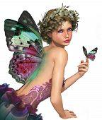 Meet A Butterfly Ca