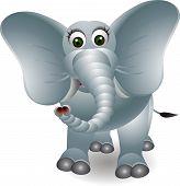 cute cartoon elephant isolated