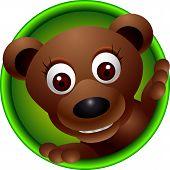 cute bear head cartoon
