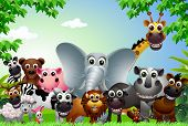funny animal cartoon in the jungle