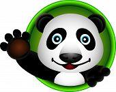 cute panda head cartoon